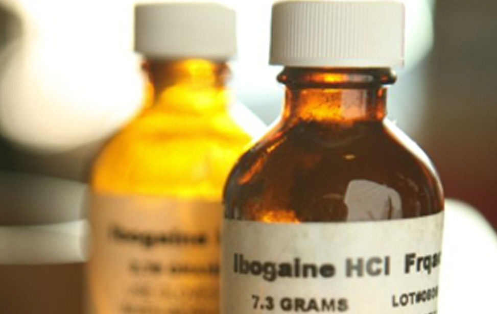 ibogaine bottle website