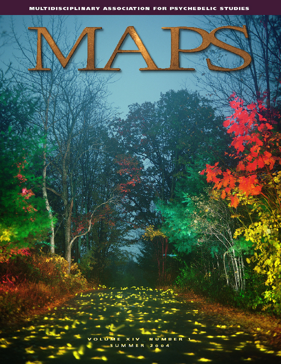 MAPS Bulletin Vol xiv No 1: Summer 2004 - Front Cover Image - Psychedelic Art - Yellow Road by Dean Chamberlain