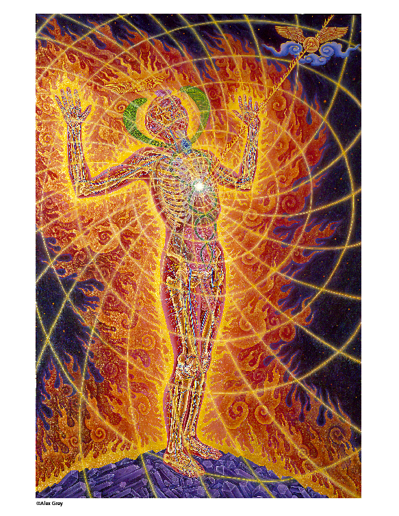 MAPS Bulletin Vol xiv No 1: Summer 2004 - Inside Front Cover Image - Psychedelic Art - Holy Fire (panel 1) by Alex Grey
