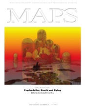 MAPS Bulletin Vol xx No 1: Spring 2010 - Front Cover Image - Psychedelic Art - Going Home by Brummbaer