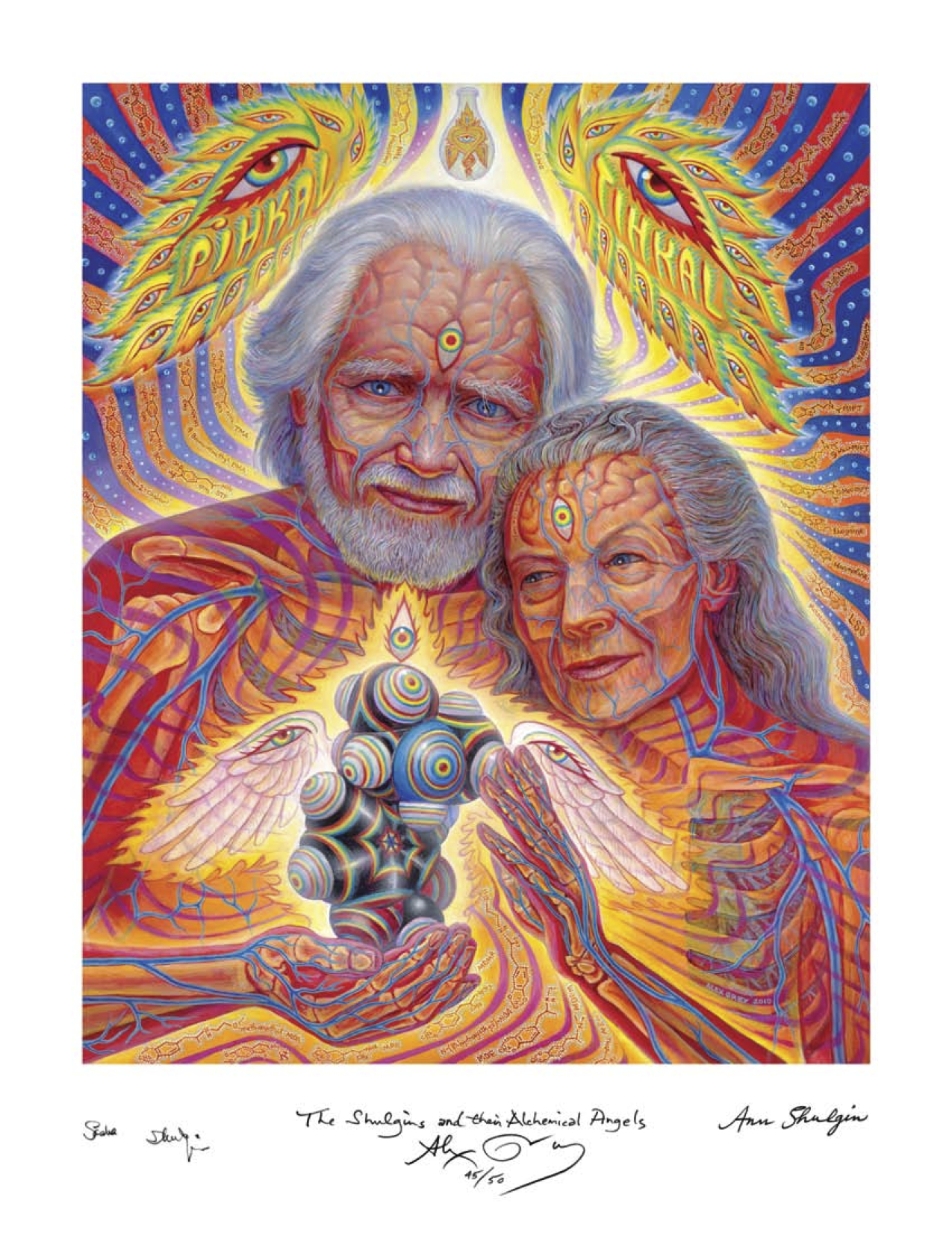 MAPS Bulletin Vol xx No 3: Winter 2010 - Inside Front Cover Image - Psychedelic Art - The Shulgin's and Their Alchemical Angels by Alex Grey