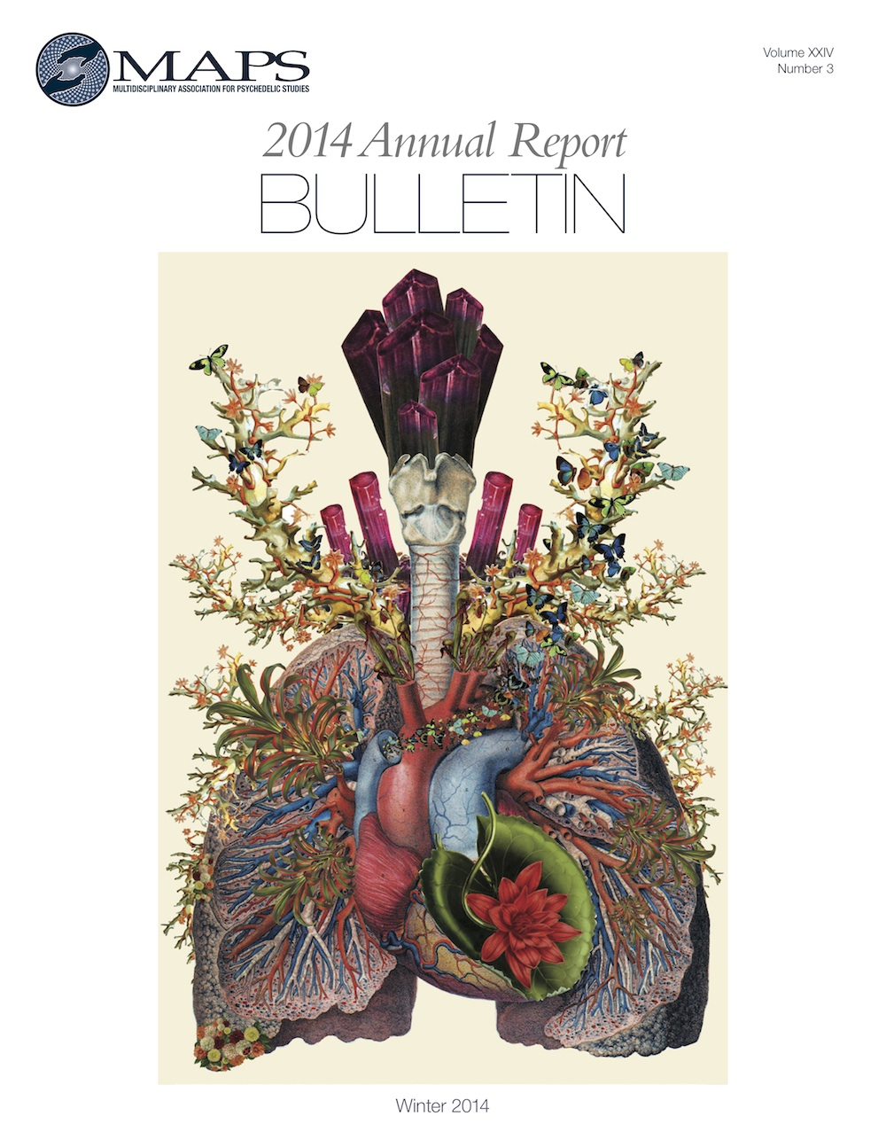 MAPS Bulletin Winter 2014: Annual Report